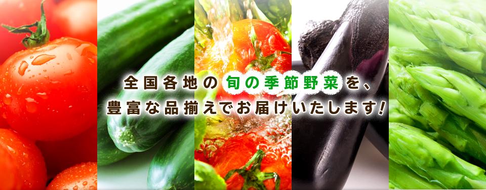 全国各地の旬の季節野菜を、豊富な品揃えでお届けいたします!