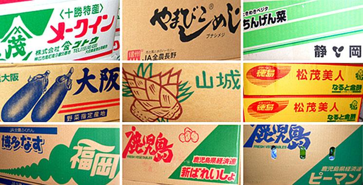 全国各地の旬の季節野菜を豊富な品揃えでお届けいたします。